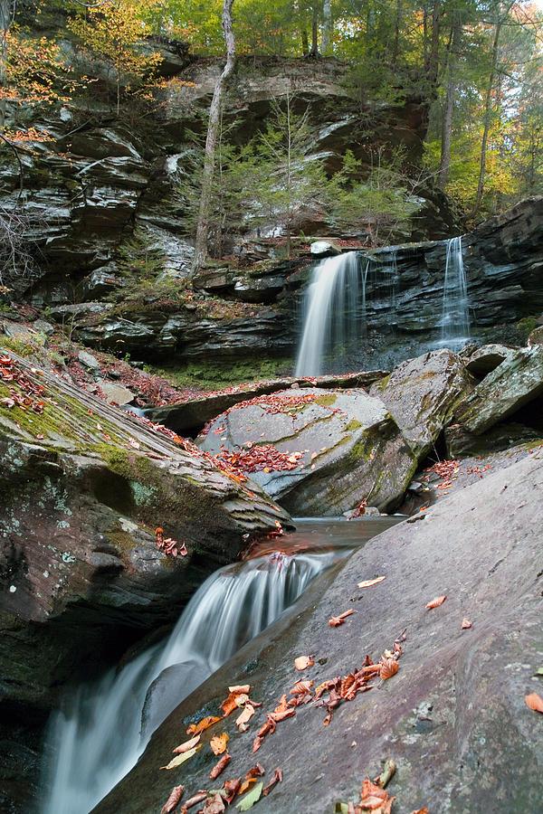 Autumn Photograph - Falling Water Meets Fallen Leaves by Gene Walls
