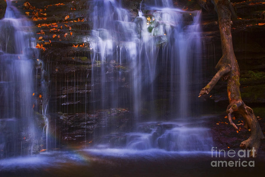 Ricketts Glen Photograph - Falls And Log by Paul W Faust -  Impressions of Light