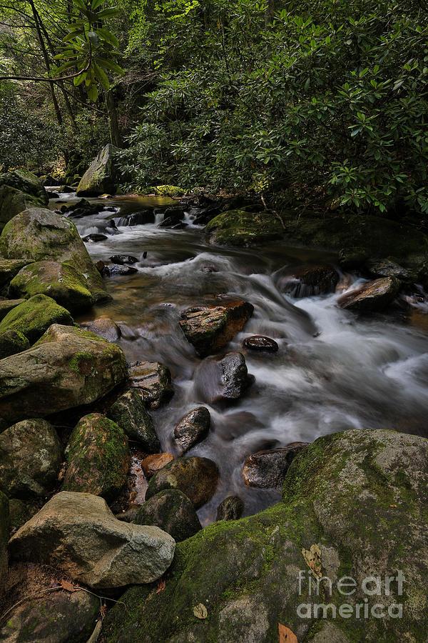 Falls and Rocks Photograph by Mina Isaac