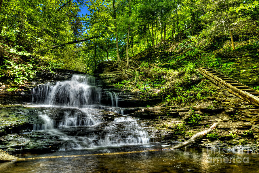 Ricketts Glen Photograph - Falls And Steps by Paul W Faust -  Impressions of Light