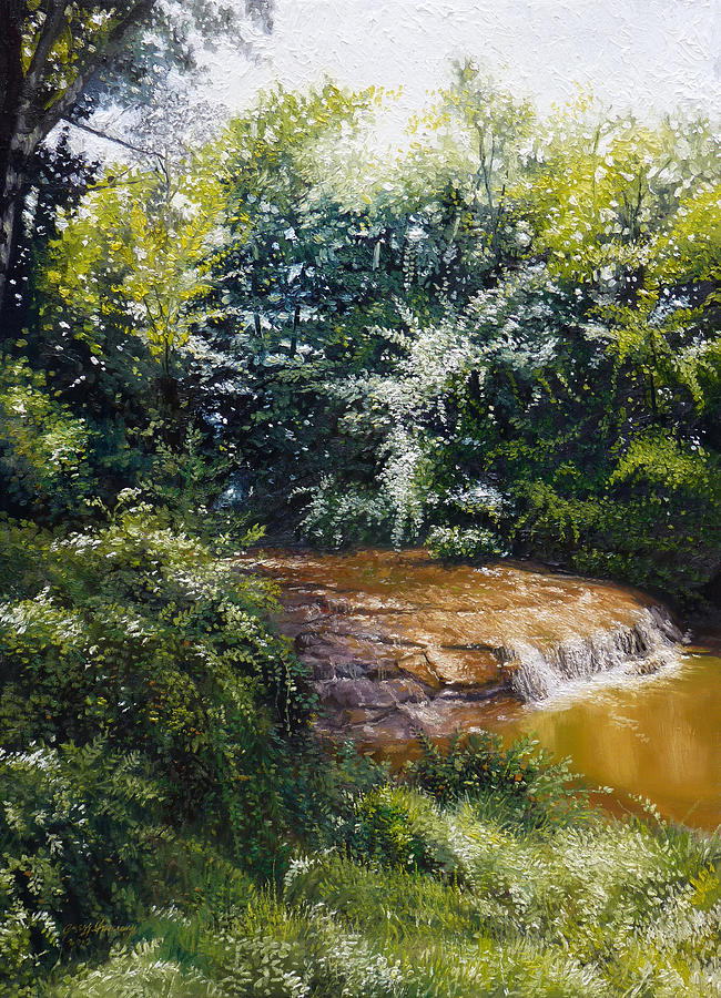 Oils Painting - Falls by Gregg Hinlicky