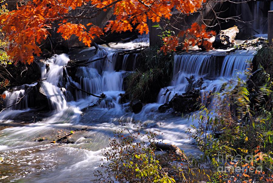 Nature Photograph - Falls in the Fall by Larry Ricker