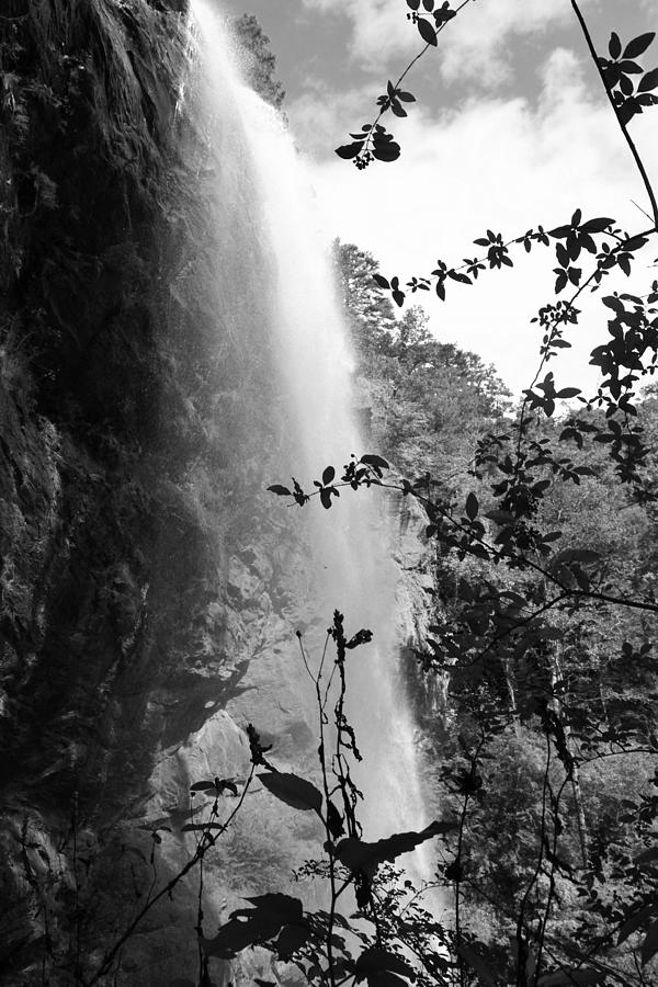 Black And White Photograph - Falls Of Eden by James Potts