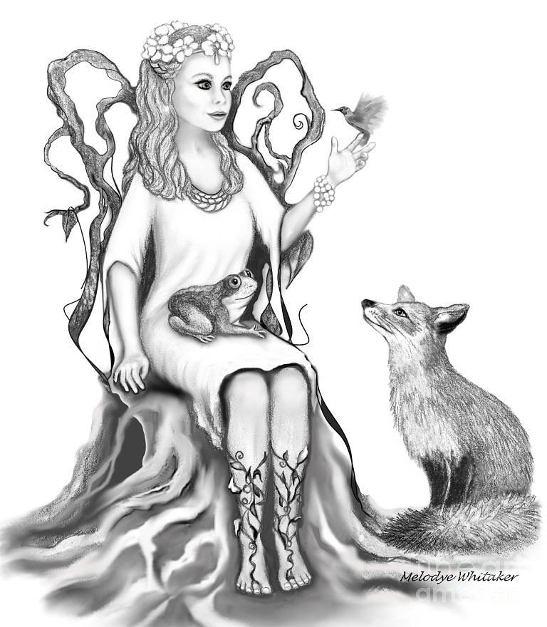 Fairy Drawing - Fantasy Book Spot Illustration by Melodye Whitaker