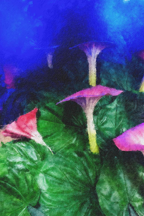 Asia Photograph - Fantasy Flowers Pastel Chalk 2 by David Lange