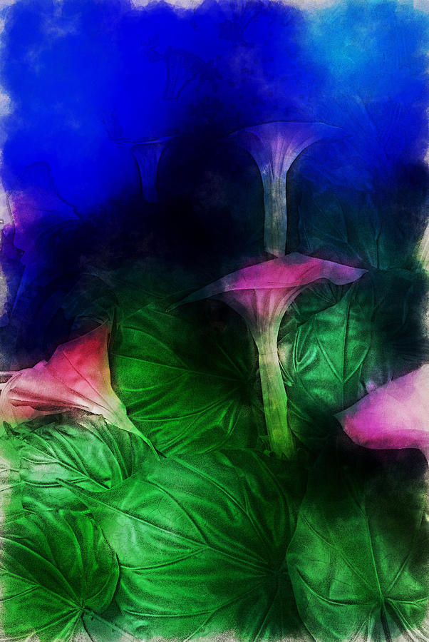 Asia Digital Art - Fantasy Flowers Traveling Pigments Hp by David Lange