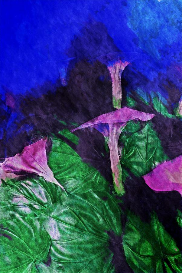 Asia Digital Art - Fantasy Flowers Watercolor 2 Hp by David Lange