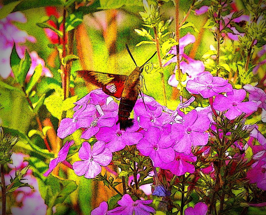 Fantasy Garden Photograph