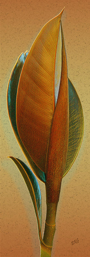 Abstract Photograph - Fantasy Leaf by Ben and Raisa Gertsberg