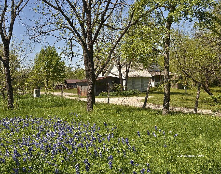 Farm House With Bluebonnets Photograph