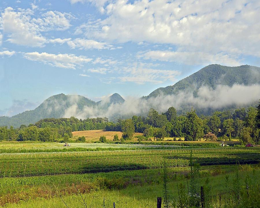 Landscape Photograph - Farm In The Valley by Susan Leggett