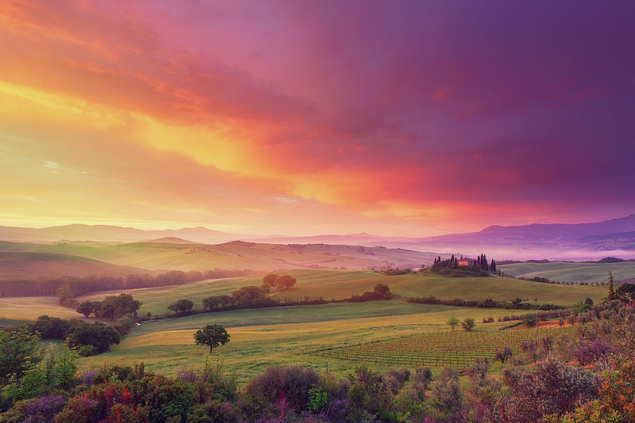 Farm In Tuscany At Dawn Photograph by Mammuth