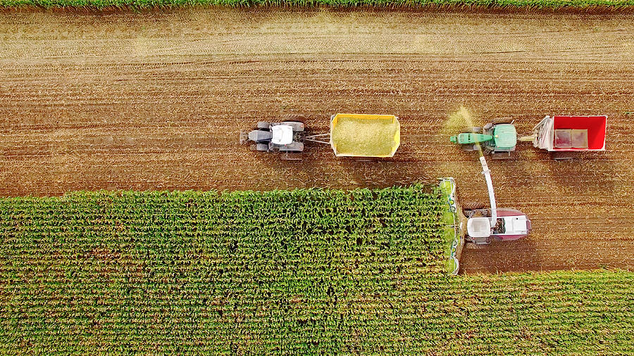 Farm Machines Harvesting Corn In September, Viewed From Above Photograph by JamesBrey