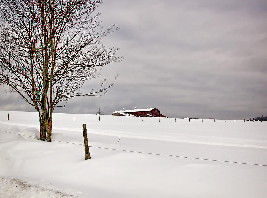 Landscape Photograph - Farm on the Hill by Diana Nault