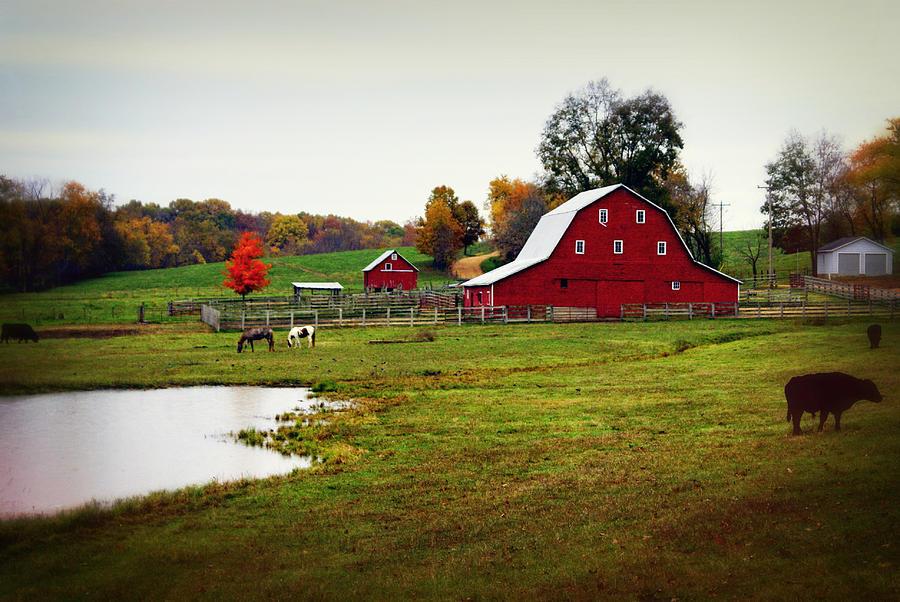 Barn Photograph - Farm Perfect by Marty Koch