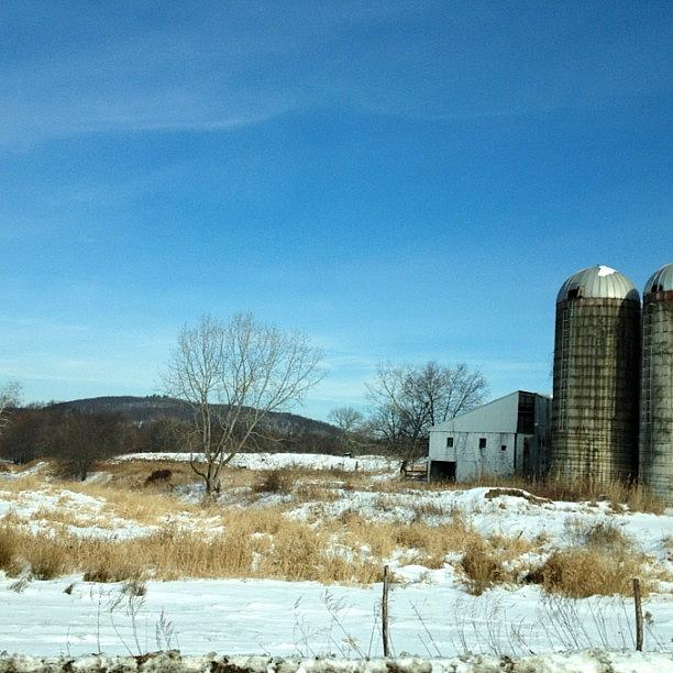 Living Photograph - #farm #road #field #country #driving by Amber Campanaro