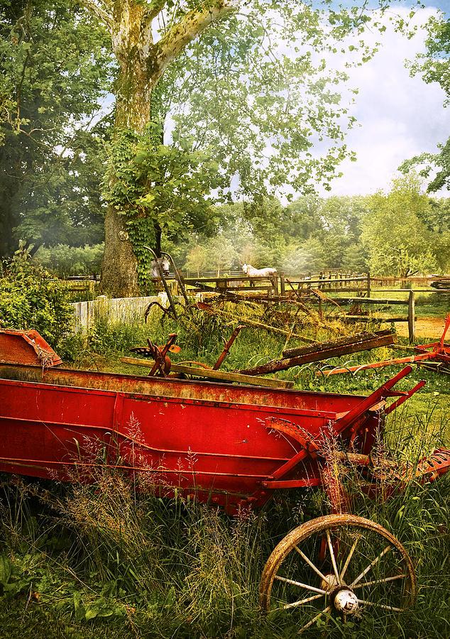 Savad Photograph - Farm - Tool - A Rusty Old Wagon by Mike Savad