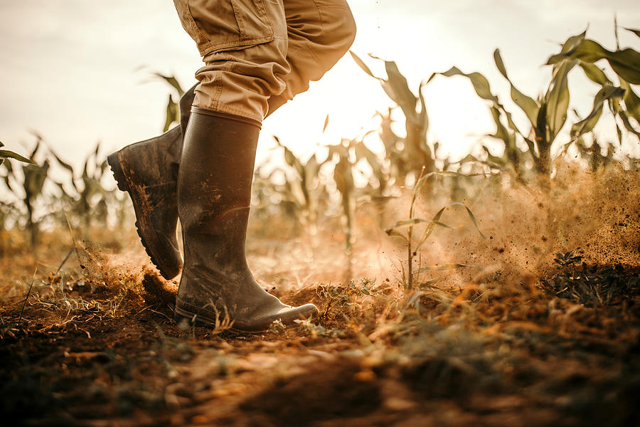 Farmers Boots Photograph by Eclipse_images