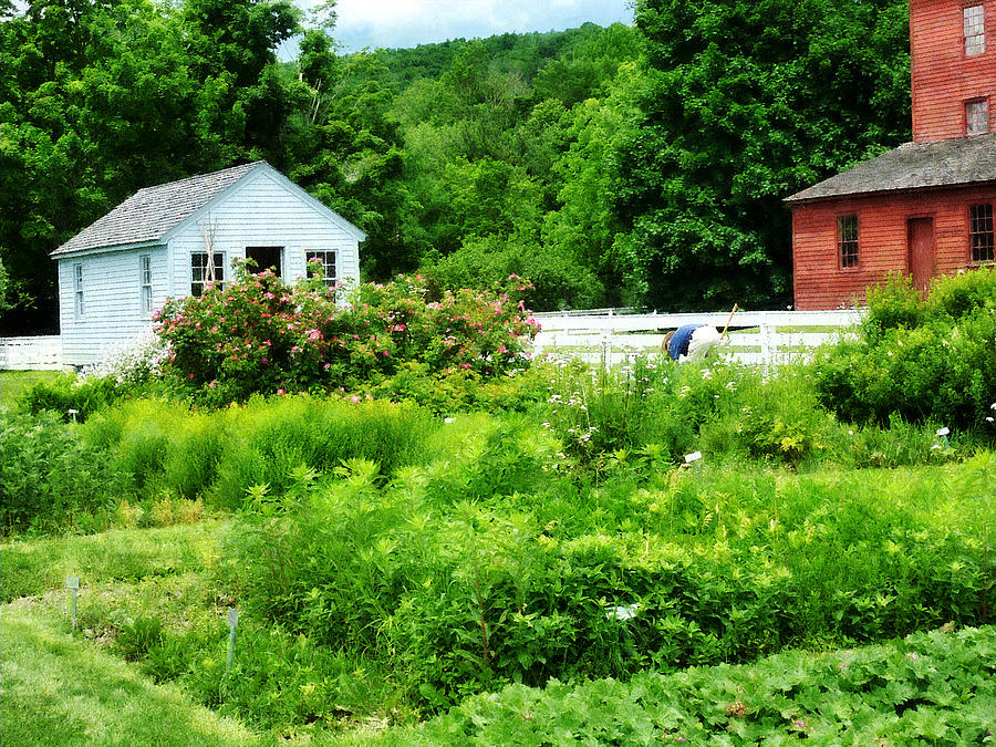 Rural Photograph - Farmers Garden by Susan Savad