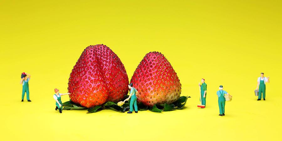 Farm Painting - Farmers Working Around Strawberries by Paul Ge