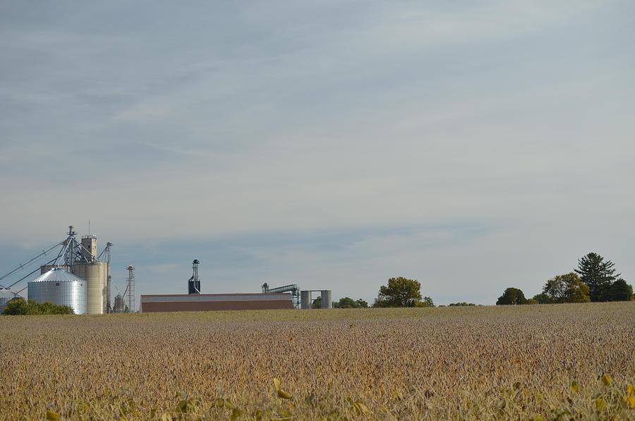 Field Photograph - Farming by Cim Paddock
