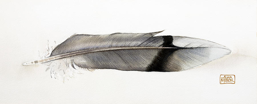 Still Life Painting - Feather by Ann Miller