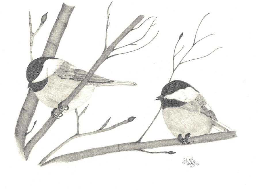 Chickadees Drawing - Feathered Friends by Patricia Hiltz