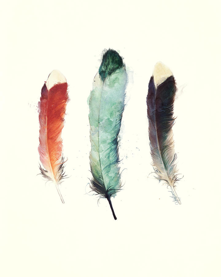 Feathers Painting - Feathers by Amy Hamilton