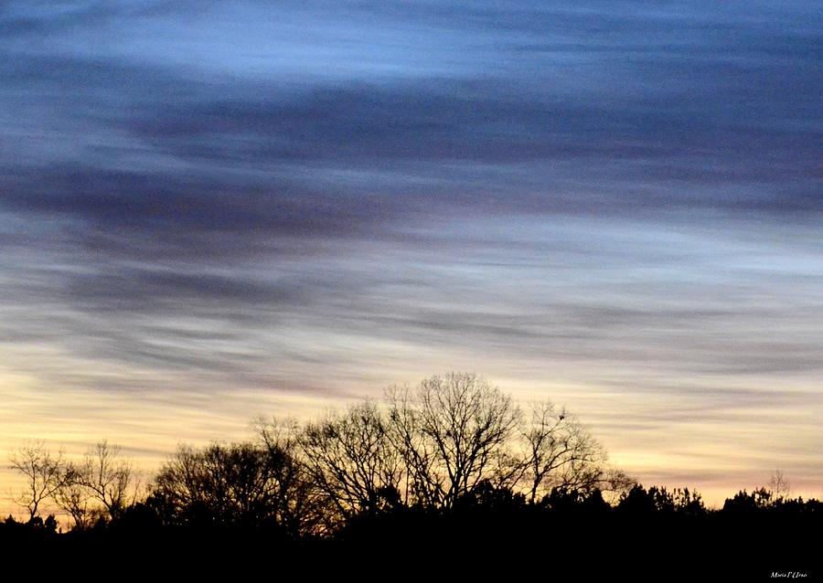 February Photograph - February 1 Dawn 2013 II by Maria Urso