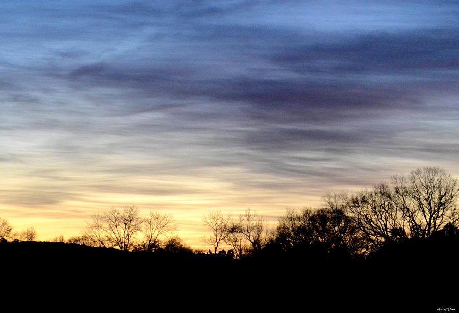 February Photograph - February 1 Dawn 2013 by Maria Urso