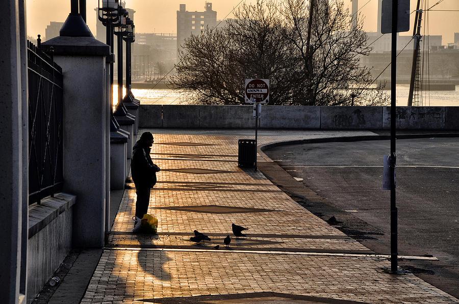 Feeding The Birds At Dawn Photograph - Feeding The Birds At Dawn by Bill Cannon