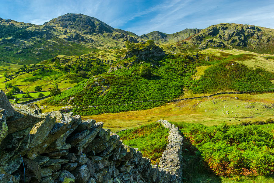 Cumbria Photograph - Fell Foot Little Langdale Lake District by David Ross