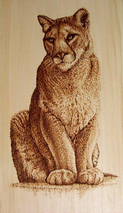Female Mountain Lion Pyrography By Cara Jordan