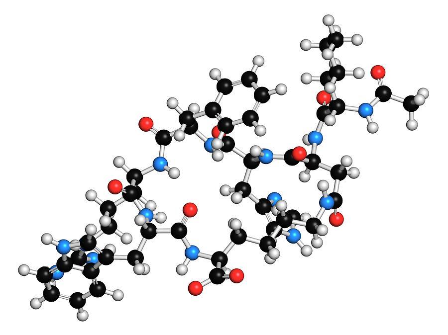 Bremelanotide Photograph - Female Sexual Dysfunction Drug Molecule by Molekuul
