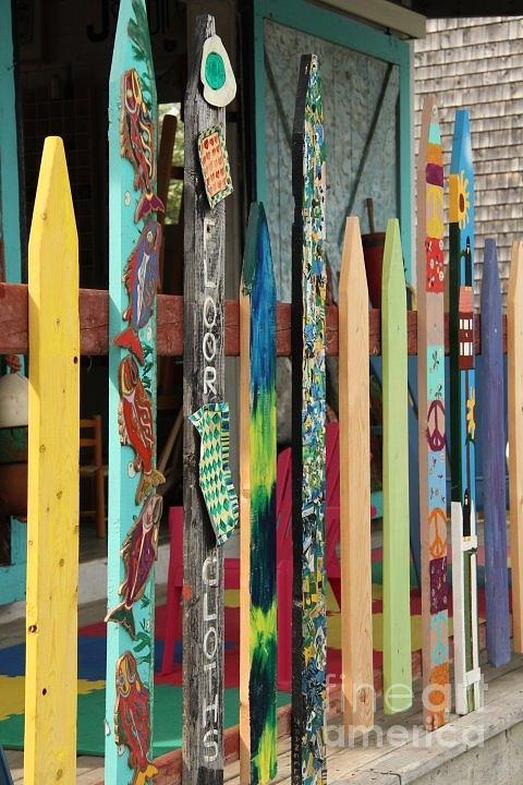 Fence Color Photograph