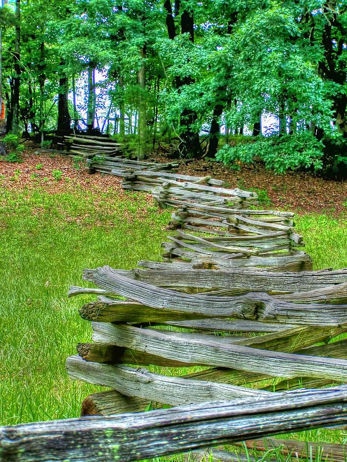 Wooden Photograph - Fence Line by Dan Stone