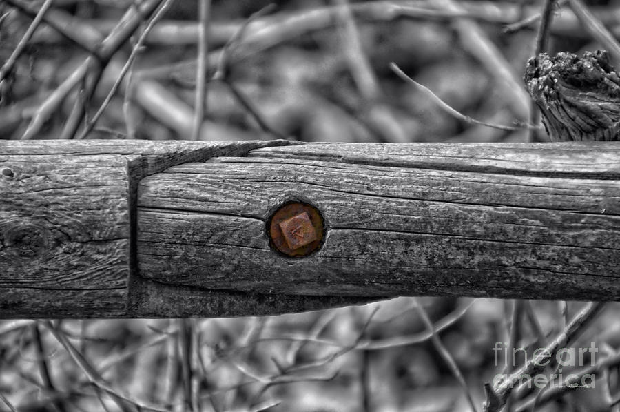 Bolt Photograph - Fence Rail With Rusty Bolt by Thomas Woolworth