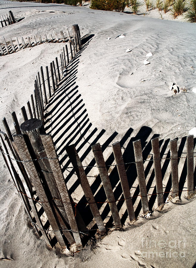 Cape May Photograph - Fence Shadows by John Rizzuto