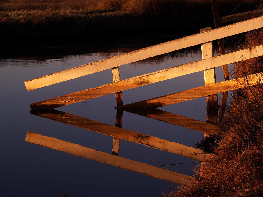 Grizzly Island Photograph - Fenced Reflection by Bill Gallagher