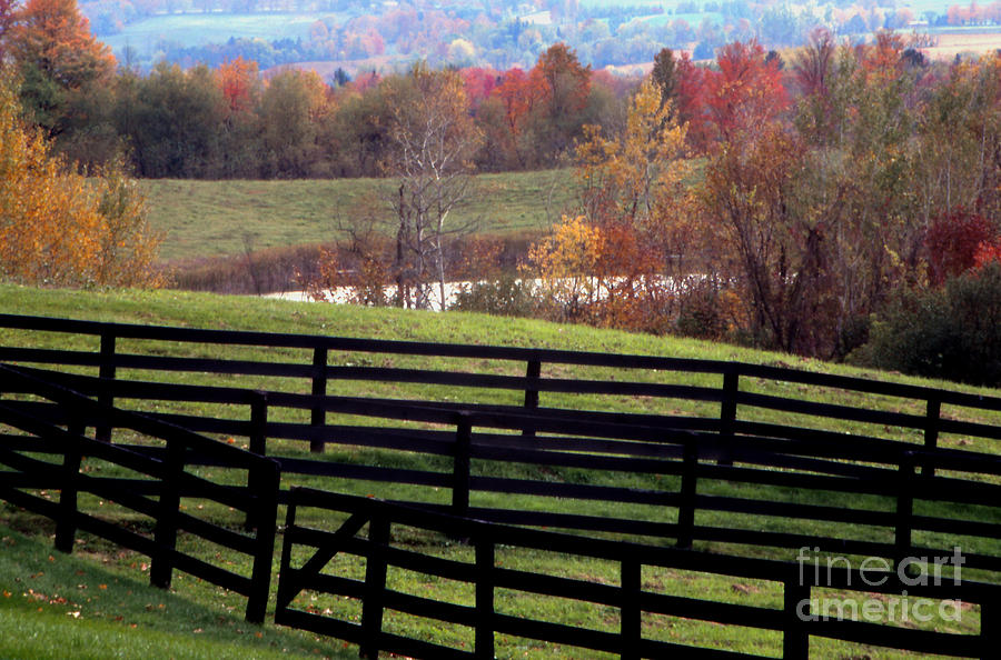 Landscape Photograph - Fences In The Fall by Eva Kato