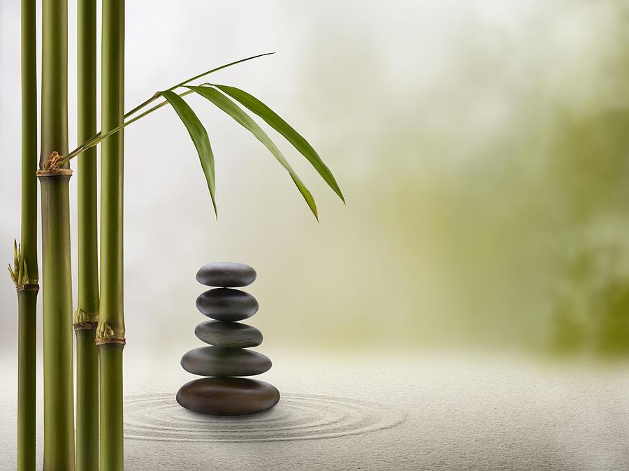Feng Shui Solitude Photograph by Pixhook