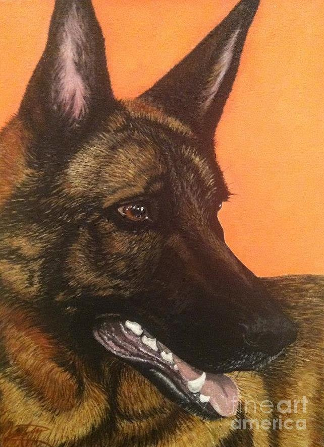 German Shepherd Dog Painting - Fenway by Ana Marusich-Zanor