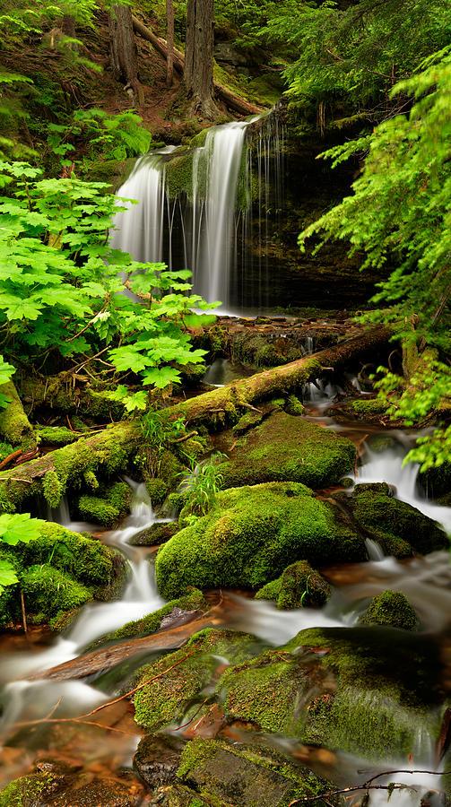 Waterfall Photograph - Fern Falls Panoramic by Leland D Howard