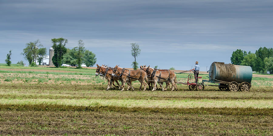 Agricultural Photograph - Fertilizing by Guy Whiteley