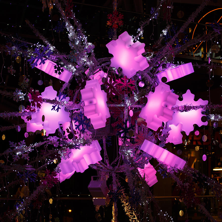 Trinity Photograph - Festive lights by Paul Indigo