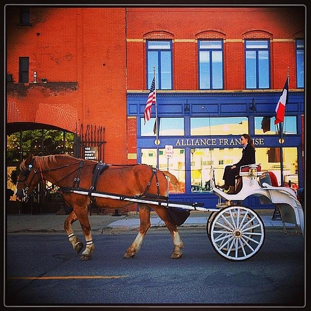 Minneapolis Photograph - Fiacre (hansom Cab). #minneapolis by Heidi Hermes