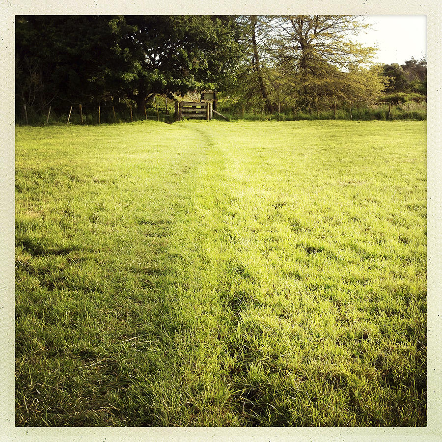Outdoor Photograph - Field by Les Cunliffe