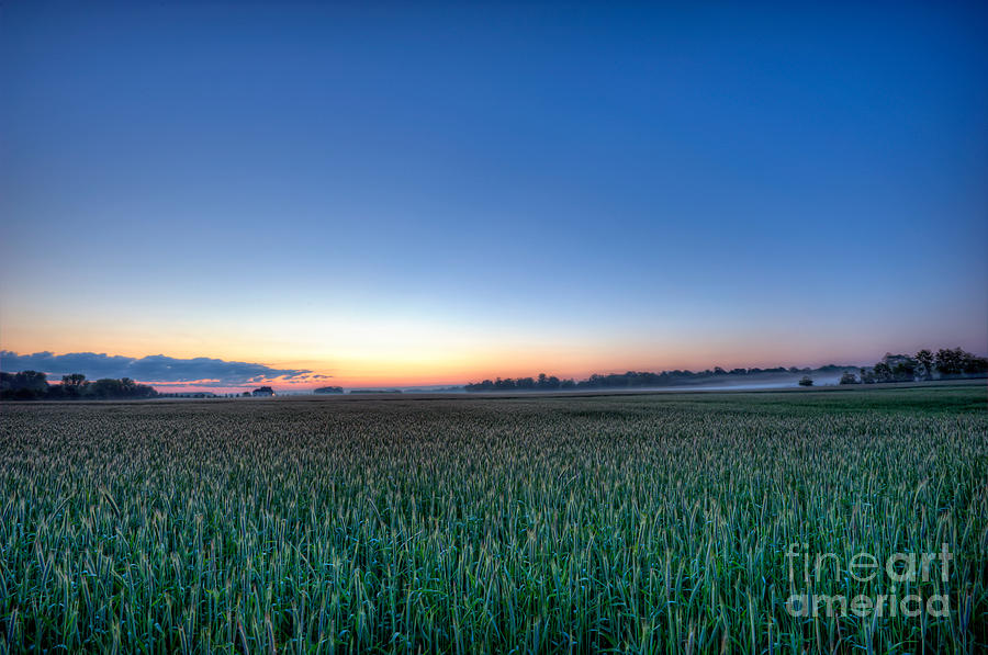 Landscape Photograph - Field Of Dreams by Michael Ver Sprill