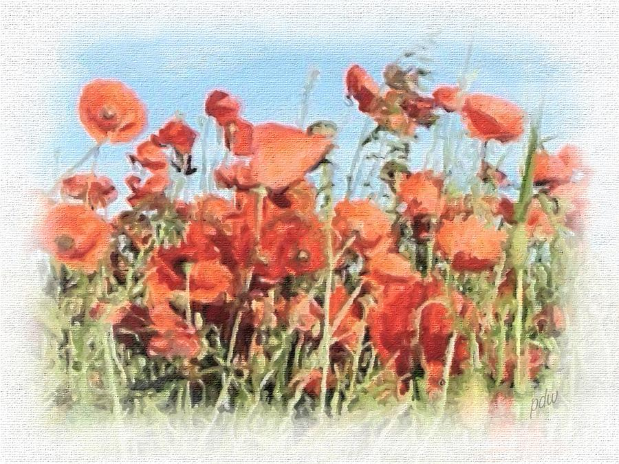 Scenic Painting - Field Of Poppies 1 by Philip White