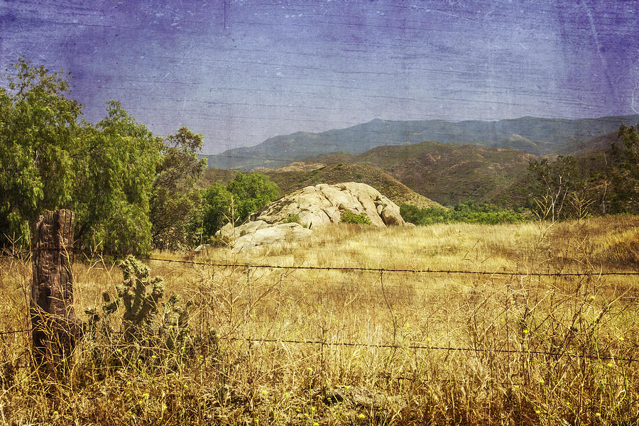 Field View of Mountains by Karen Stephenson